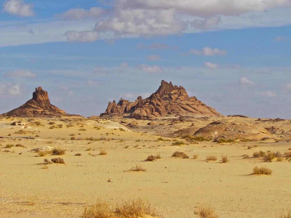 Ancient North Arabian  Wikipedia